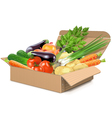 Carton Box with Vegetables vector image