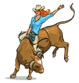 cowgirl riding a bull isolated vector image vector image