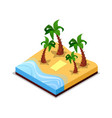 sandy beach with palm trees isometric 3d icon vector image