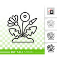 dandelion simple black line icon vector image vector image
