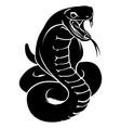 stylized snake vector image vector image