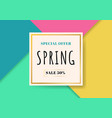 template spring sale beautiful colorful vector image