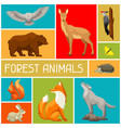 background with woodland forest animals and birds vector image