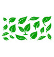 green abstract leaf icon set design graphic vector image