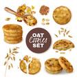 oatmeal cookies realistic set vector image vector image