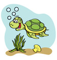 Cartoon sea turtle swimming underwater vector image