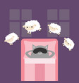 cat in sleeping mask jumping sheeps cant sleep vector image