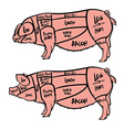 Cut of meat set Hand drawn pig Pork cuts diagram vector image vector image