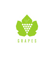 grapes logo winemaking mark bunch grapes on a vector image