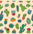 cactus home nature handmade of vector image