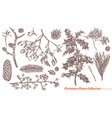 christmas festive vintage collection plants vector image vector image