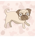 Cute pug dog vector image vector image
