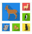 different animals flat icons in set collection for vector image vector image