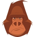 Funny monkey vector image