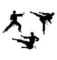 karate martial art silhouettes vector image