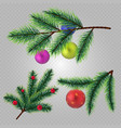 realistic christmas fir tree branches with vector image vector image