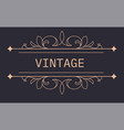 vintage banner with floral ornaments and arrows vector image vector image
