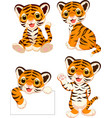 cartoon baby tigers collection set vector image vector image
