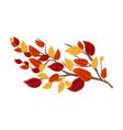 decorative branch vector image vector image