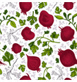 hand drawn beetroot pattern vector image vector image