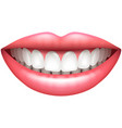 healthy teeth beautiful woman smile isolated on vector image vector image