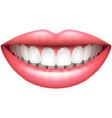 healthy teeth beautiful woman smile isolated vector image