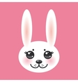 Kawaii funny animal muzzle white rabbit on pink vector image vector image