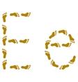 traces letter e vector image
