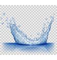 Transparent water splash vector image vector image