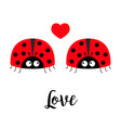 two red lady bug ladybird icon set couple vector image vector image