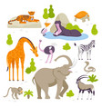 wild animals in the zoo set of vector image