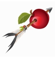 Arrow Indian got into red apple vector image