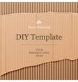 Diy template with cardboard texture background vector image