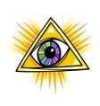 eye providence vector image