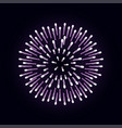 firework is bursting with sparkles on dark night vector image vector image
