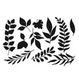 foliage shapes and silhouettes vector image