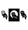 owl icons vector image