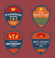 set of vintage badges vector image
