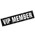 square grunge black vip member stamp vector image