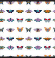 exotic moth and tropic butterfly seamless pattern vector image vector image