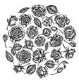 round floral design with black and white roses vector image