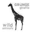 silhouette giraffe in grunge design style animal vector image vector image