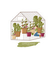 woman working in greenhouse flat style vector image