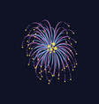 celebration firework with stars flying apart from vector image
