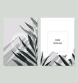 invitation card template design palm leaves vector image vector image