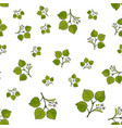 seamless pattern with linden branches vector image vector image