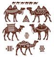 set stylized figures camels vector image vector image