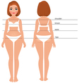 Woman body full length front and back vector image vector image