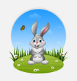 cartoon happy rabbit standing on the grass vector image