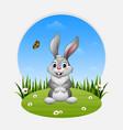 cartoon happy rabbit standing on the grass vector image vector image